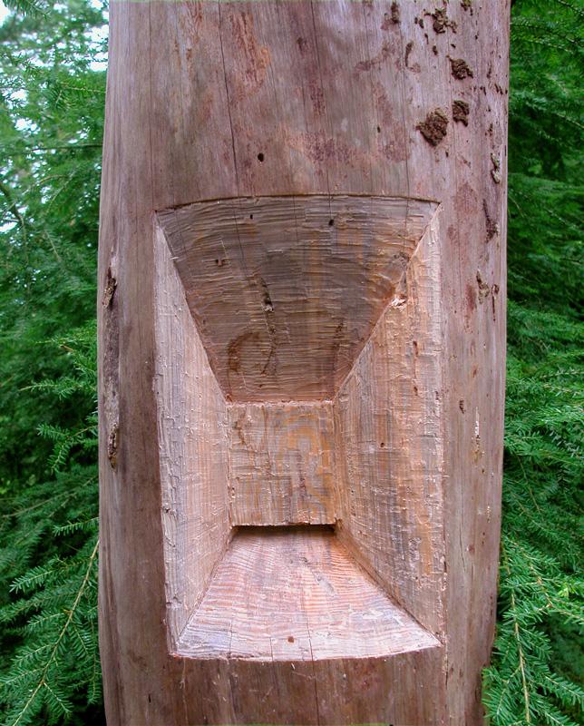dode boom sculptuur