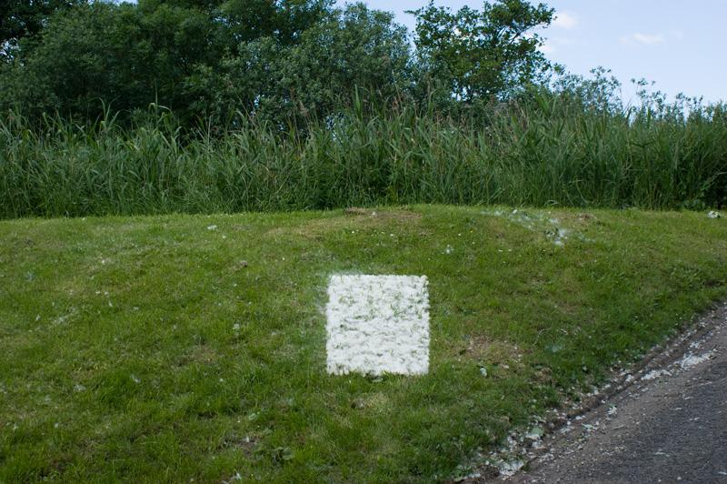 rechthoek van wilgepluizen op een dijk